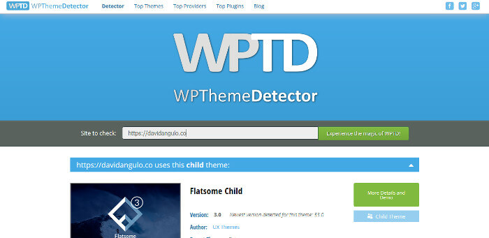 benchmarking marketing digital WP Theme Detector