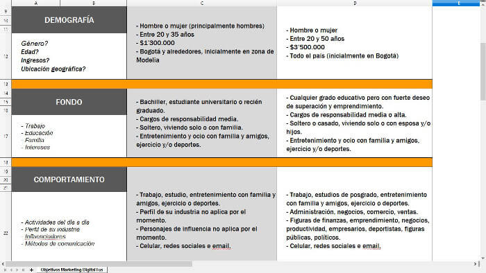 Creando un perfil de cliente ideal - buyer persona 2
